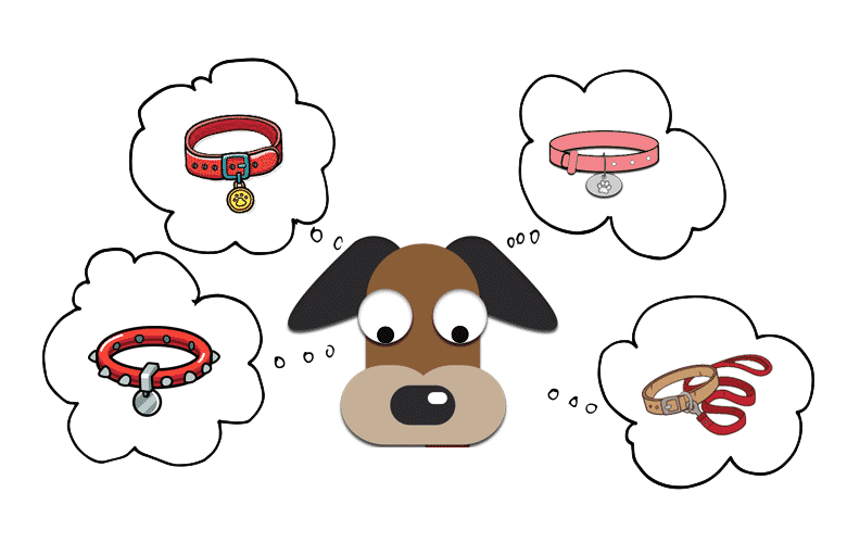 Best dog collars overview