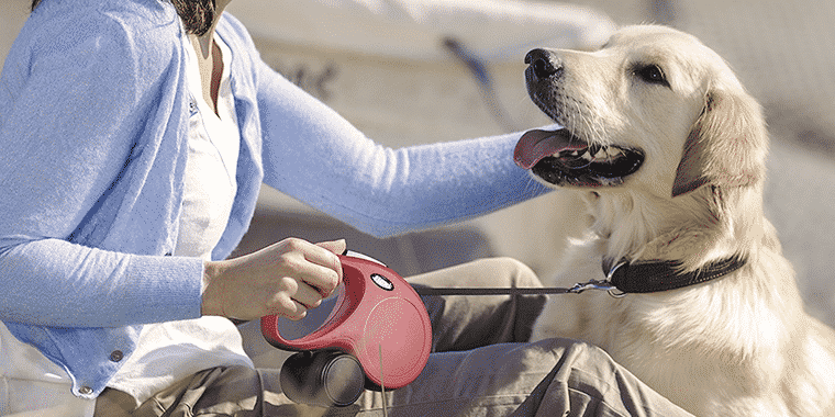 The Best Retractable Dog Leashes in 2021
