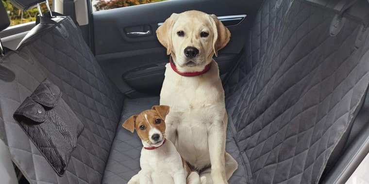 The Best Dog Car Seat Covers in 2021